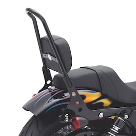 One-Piece H-D Detachables Sissy Bar - Black