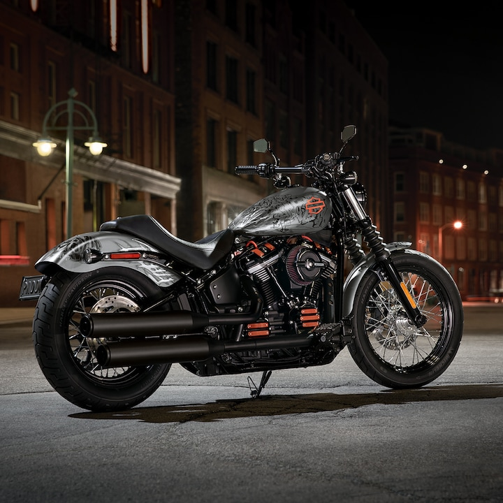 2019 Harley-Davidson Softail motorcycle Parked on a Street