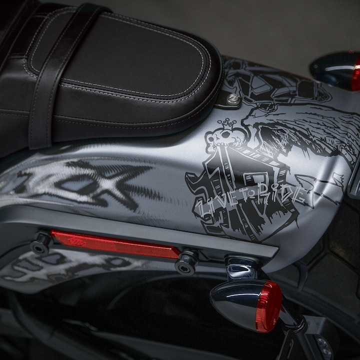 Seat on 2019 Softail H-D Motorcycle