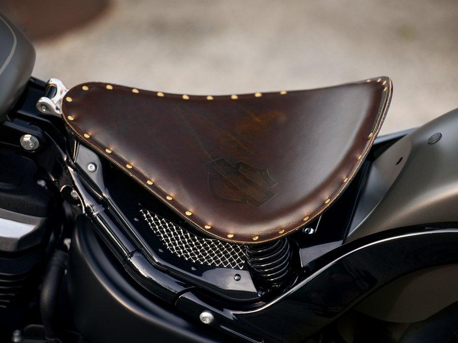 2019 street bob motorcycle harley davidson india