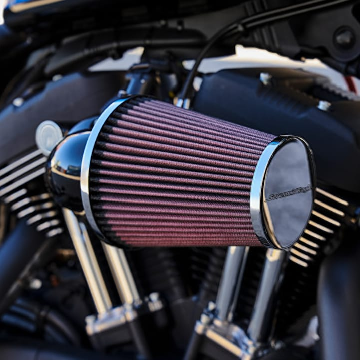 Harley-Davidson 2019 Iron 1200 Custom motorcycle air filter