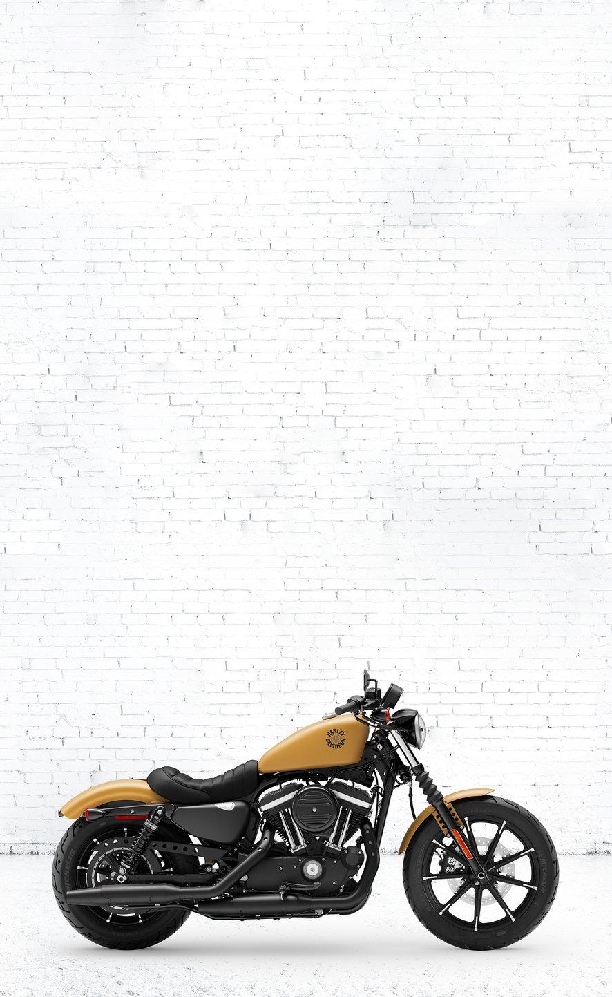 2019 harley davidson iron 883 motorcycle