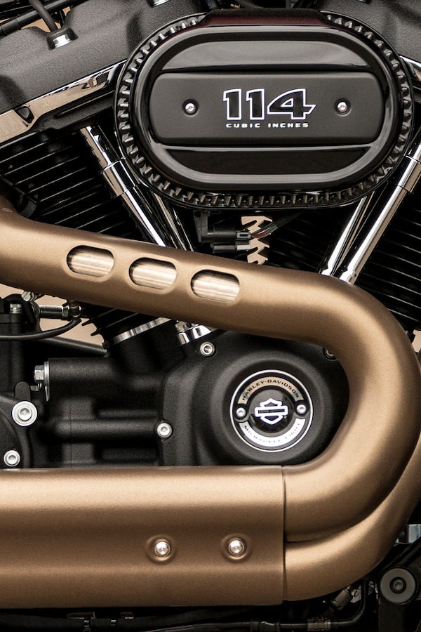2020 H-D Softail motorcycle Engine