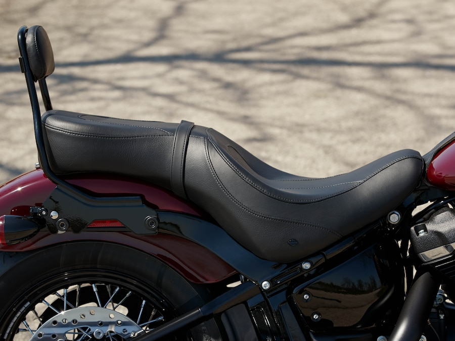 2020 Harley-Davidson Blue Softail Slim Motorcycle foot boards